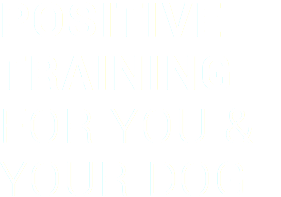 positive-training
